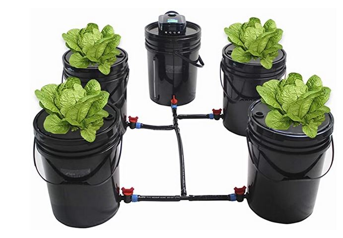 Free Hydroponic Plan for Building a Water Culture System Using a 5 Gallon Bucket